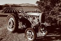 Wine Country Tractor 02_Sepia