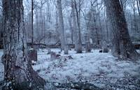 Infrared Cemetery