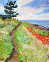 Monhegan Foot Path