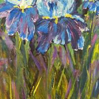 Iris Garden Art Prints & Posters by Claire Bull