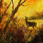 """A deer in morning autumnal light"" by pol"