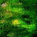 """Giverny spirit XIV"" by Woodsman"