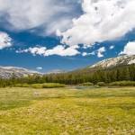 """Tuolumne Meadows"" by tasveer"