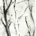 """White Monotype Tree"" by Hikaru811"