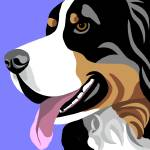 """Bernese Mountain Dog"" by waterart"