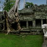 """""""The Wild Ruin of Ankor Thom, Panorama"""" by JamesBWells"""