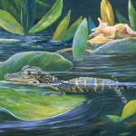 """""""Gator"""" by Reefies"""