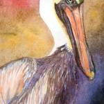 """Pelican"" by PatriciaRivers"