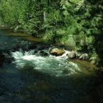 """Glen Haven Brook Rocky Mountain National Park"" by EdmondHogge"