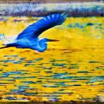"""""""Vorrei poter volare via"""" by etravus"""