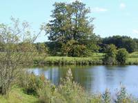 Asterby Lake