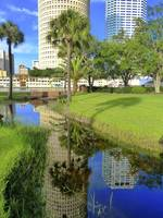 Tampa Reflections