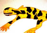 Gila Monster Print
