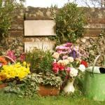 """Floral Tributes"" by S_Joynson"