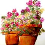 """Geraniums"" by debbiepaints"