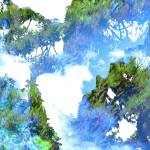 """NaturScape"" by SuzanneSilkCollection"