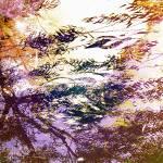 """""""NaturScape-Sunrise-1"""" by SuzanneSilkCollection"""