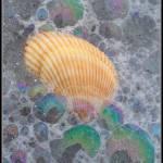 """bubbling beach"" by Jimaustinjimages"