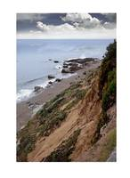 Cliffs At Cambria