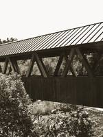 Riverwalk Covered Bridge I