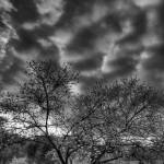 """April Sky at Inn at Cedar Falls by Jim Crotty"" by jimcrotty"
