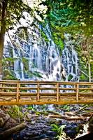 The bridge @ Ramona falls. Mt Hood national forest