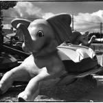 """""""elephant"""" by markwaldron"""