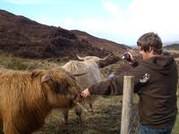 Holden feeding the coos