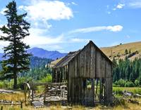 Old shack near Imnaha Oregon