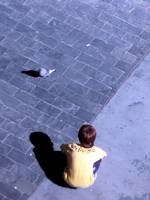 Kid and Pigeon II