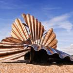 """Aldeburgh Scallop"" by oleymoley"