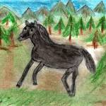 """""""Wild horse"""" by JKLUNDGREN"""