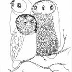 """owls"" by trevor"