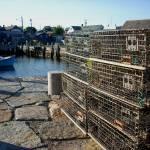 """Lobster Crates"" by KarlaRickerArt"