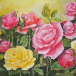 """Field of Roses"" by MaryDonaldsonPowell"