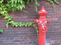 Hilarious hydrant