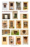 Windows of Tuscany (Vertical)