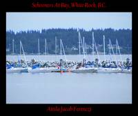 Schooners At Bay White Rock BC