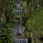 """""""Cascade in the Botanical Garden Rio de Janeiro Bra"""" by einsiedler"""