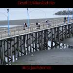 """Detail 02 White Rock Pier"" by Attila_Photos"