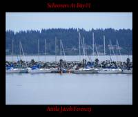Schooners At Bay 01