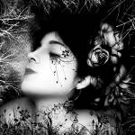 """Morning flower"" by ManuelPorcariChumpitaz"
