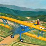 """Bi-Plane 456 over Wine Country"" by TropicalExpression"