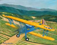Bi-Plane 456 over Wine Country