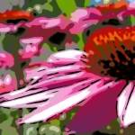 """Echinacea (stylized)"" by mikepdx"