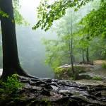 """""""Ash Cave Falls"""" by garthglazier"""