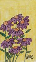 Coneflowers in Purple