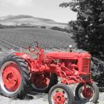 """Red Tractor"" by prettypictures"