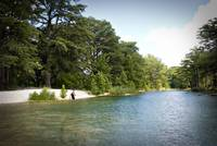 Fly Fishing on the Frio River