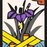 """Iris d"